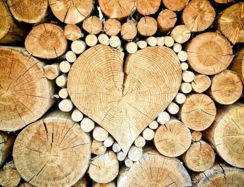 """Das Wort """"Liebe"""" kommt nur einmal im Grundgesetz vor"""